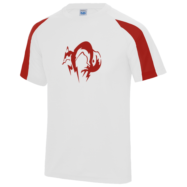Personnalisation-Tshirt1